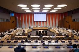 Hội đồng Bảo an Liên hợp quốc gia hạn thêm 12 tháng trừng phạt CH Trung Phi
