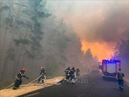 Hàng trăm lính cứu hỏa nỗ lực dập cháy rừng tại miền Đông Ukraine
