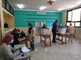 Ai Cập tiến hành bầu cử Thượng viện vòng hai