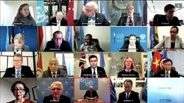 HĐBA kêu gọi thúc đẩy hoà bình và tăng cường nỗ lực giải quyết nguy cơ về nạn đói ở Yemen