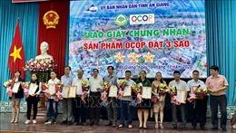 Chương trình OCOP thúc đẩy kinh tế nông thôn phát triển