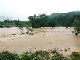 Áp thấp sau bão số 10 gây ngập lụt, sạt lở tại Bình Định