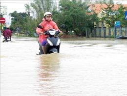 Quảng Ngãi: Sơ tán 800 hộ dân ra khỏi vùng bị ảnh hưởng bởi nước lũ dâng cao