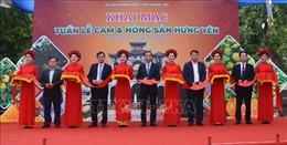 Cam và nông sản Hưng Yên được tiêu thụ mạnh tại Hà Nội