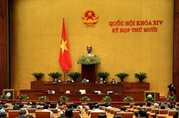 Thủ tướng phân công cơ quan chủ trì soạn thảo văn bản