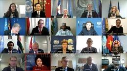 Việt Nam và Indonesia ủng hộ tiến trình chuyển tiếp ở Sudan