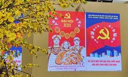 Báo Nam Phi đánh giá cao nền ngoại giao toàn diện, hiện đại của Việt Nam
