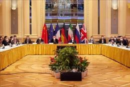 Nga: Các bên nhất trí đẩy nhanh tiến độ đàm phán về vấn đề hạt nhân Iran