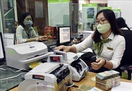 Tăng trưởng tín dụng được kỳ vọng phục hồi khi 'bình thường mới'