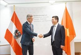 Việt Nam và Cộng hòa Áo hướng tới hợp tác về năng lượng tái tạo