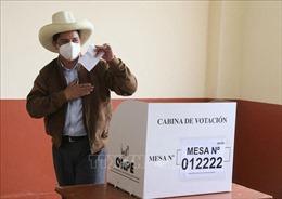 Peru tiến hành bầu cử tổng thống vòng 2