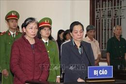 Lừa xin việc cho hàng chục người, 2 bị cáo lĩnh án 24 năm tù giam