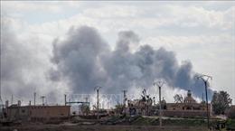 SDF nối lại chiến dịch chống IS sau khi sơ tán người dân
