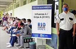 Brazil ban bố tình trạng khẩn cấp do bùng phát dịch cúm A/H1N1