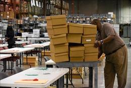 Bầu cử Quốc hội Mỹ giữa nhiệm kỳ: Bang Florida yêu cầu kiểm lại phiếu bằng tay