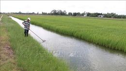 Trà Vinh phòng, chống hạn và xâm nhập mặn mùa khô
