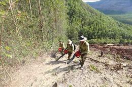 Công điện khẩn về phòng cháy, chữa cháy rừng