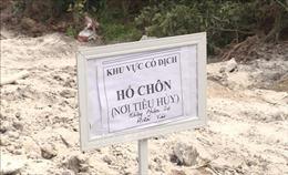Hà Nội hỗ trợ 38.000 đồng/kg lợn hơi cho người dân khi tiêu hủy lợn bệnh