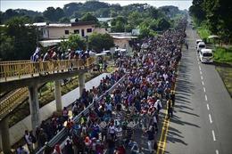 Không chặn được người di cư, Guatemala, Honduras và El Salvadorbị Tổng thống Mỹ cắt giảm viện trợ
