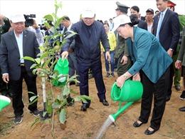 Chủ tịch Quốc hội Nguyễn Thị Kim Ngân dự Lễ ra quân hưởng ứng Tết trồng cây