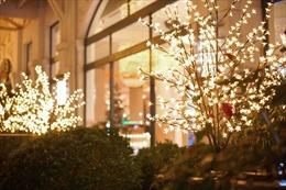 Mùa lễ hội diệu kỳ tại Khách sạn Hà Nội Daewoo