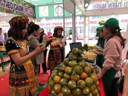 'Tuần lễ cam sành, các sản phẩm OCOP và sản phẩm tiêu biểu tỉnh Hà Giang năm 2019'