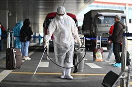 Sân bay Vân Đồn kiên cường vượt qua mùa dịch nhờ quy trình hàng không đặc biệt