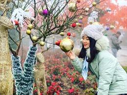 Đón 'Giáng sinh tuyết trắng' tại Lễ hội mùa đông Fansipan