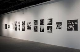 Những 'Kết nối cảm xúc'  trong triển lãm nhiếp ảnh tại VCCA