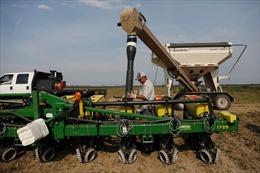 Chính phủ Mỹ chi 12 tỷ USD hỗ trợ nông dân vượt qua cuộc chiến thương mại