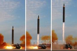 Báo Hàn Quốc: Triều Tiên chấp thuận chuyển thông tin hạt nhân cho Mỹ