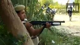 Cảnh sát Ấn Độ mời phóng viên tới chứng kiến đấu súng với tội phạm