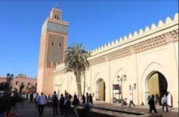 Cải cách chính sách - Nền tảng thúc đẩy phát triển của Maroc
