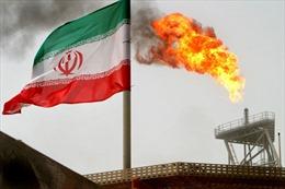 Nga lý giải đòn trừng phạt của Mỹ nhằm vào mạng lưới chuyển dầu cho Syria