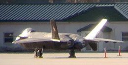 Thực hư 'tàng hình cơ' J-20 Trung Quốc xuất hiện ở căn cứ không quân Mỹ