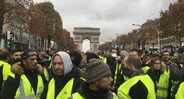 Ai Cập cấm bán gile vàng, lo sợ bùng phát bạo loạn kiểu Pháp