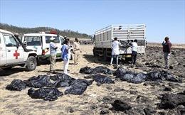 Rộ tin máy bay Boeing của Ethiopia trục trặc động cơ 3 ngày trước khi gặp nạn