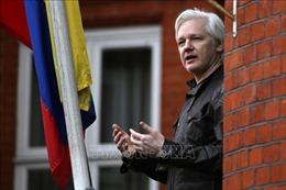 Ông trùm WikiLeaks có thể là đáp án cho cuộc điều tra Nga can thiệp bầu cử Mỹ