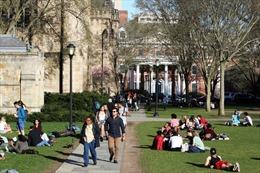 Chi 1,2 triệu USD mua suất Đại học cho con, vì sao phụ huynh Trung Quốc chưa bị buộc tội?