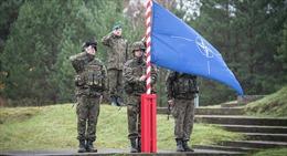 Nếu Mỹ không còn là thành viên, NATO sẽ chịu thiệt hại thế nào?
