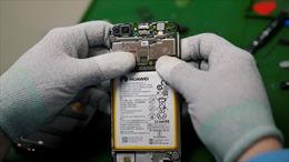 Lo mất hàng tỷ USD, nhiều 'ông lớn' công nghệ Mỹ âm thầm vận động nới lỏng Huawei