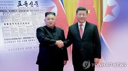Báo chí Triều Tiên dồn dập đưa tin về chuyến thăm của Chủ tịch Trung Quốc