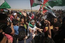 'Kế hoạch Palestine' của Nhà Trắng bị chê là ảo tưởng