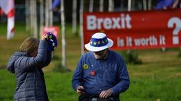 Pháp đã mất hết kiên nhẫn với Anh về Brexit