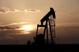 Kho dầu chiến lược khổng lồ của Mỹ có gì