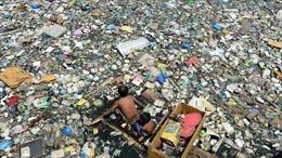 Tranh cãi tuyên bố 'nhựa không phải kẻ thù' của Thủ tướng Nhật Bản