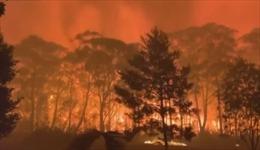 Cận cảnh ngọn lửa cao 70 m hoành hành Australia