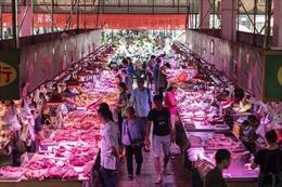 Ngân hàng Trung Quốc dùng thịt lợn để dụ khách hàng gửi tiền