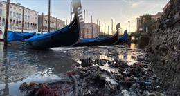 Kênh đào Venice 'cạn trơ đáy' sau trận lụt lịch sử
