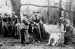 Gặp gỡ những người phụ nữ tiền tuyến của nước Anh trong Thế chiến I